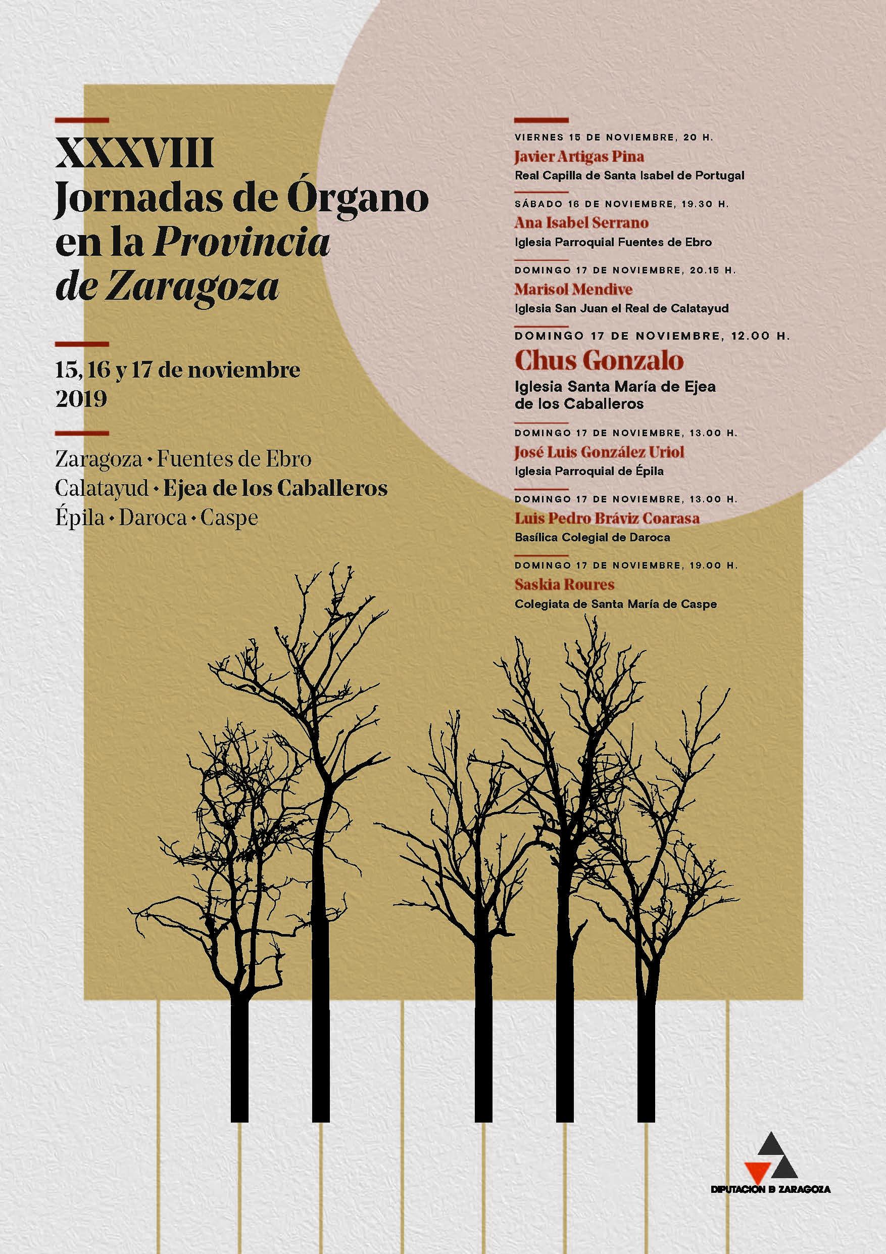 Las XXXVIII Jornadas de órgano de la DPZ recalan en Ejea con un concierto de Chus Gonzalo