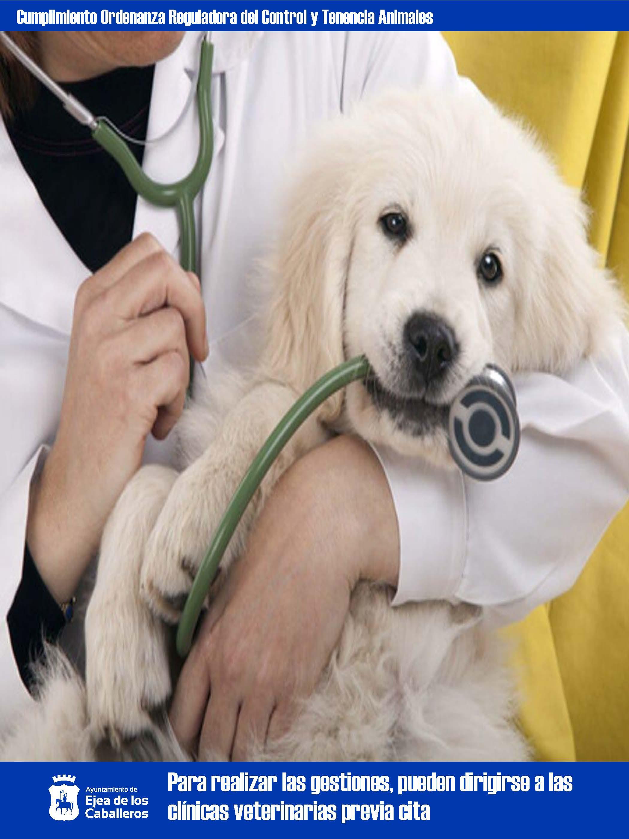 Ejea pionera en el análisis genético de perros domésticos para evitar el abandono y mantener limpios sus espacios públicos