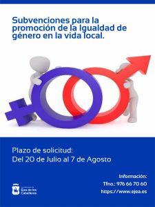 Subvenciones en materia de promoción de la Igualdad de Género en la vida local