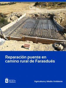 Lee más sobre el artículo Rehabilitado uno de los puentes de un camino rural del Monte de Farasdués