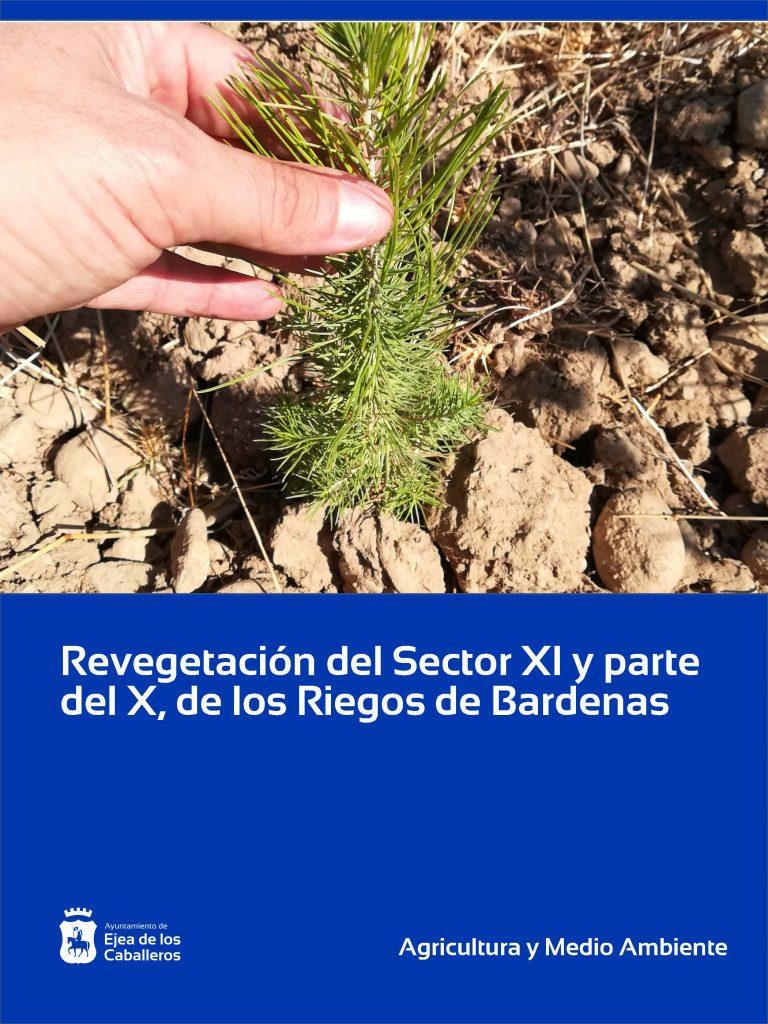 Revegetación en las obras de puesta en regadío del Sector XI y parte del X, de los Riegos de Bardenas