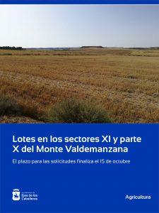 Adjudicación de Lotes en los sectores XI y parte del X del Monte de Valdemanzana