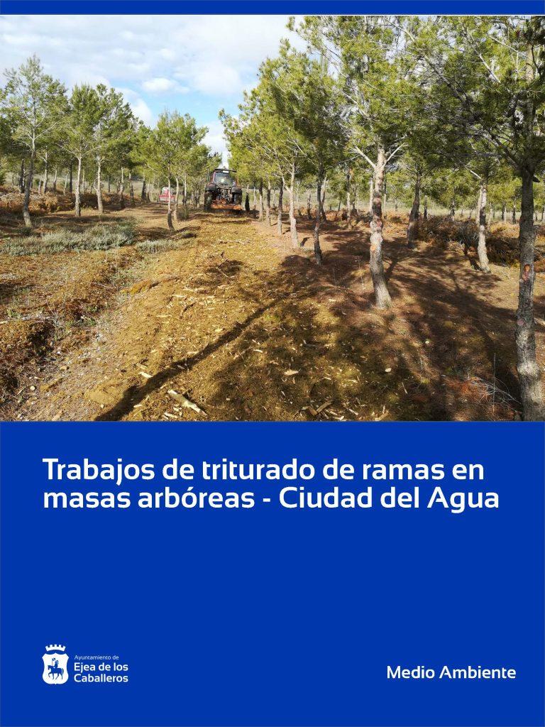Trabajos de acondicionamiento y mantenimiento en el entorno de la Ciudad del Agua
