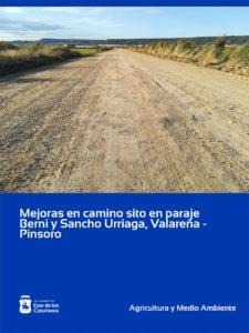 Mejora de la capa de rodadura del camino público sito en el paraje de Berni y Sancho Urriaga, Valareña y Pinsoro, fase II